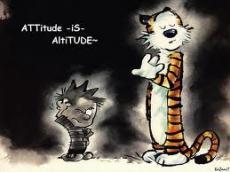 attitude towards life
