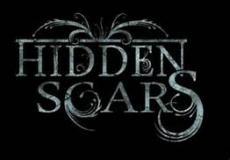 HIDDEN SCARS!!!!!