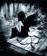 .Fallen Angels.