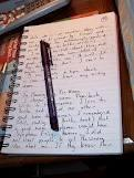 Diary Entry #1