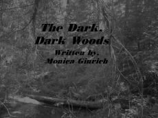 The Dark, Dark woods. (Chapter One)