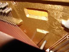 PianoDeceased