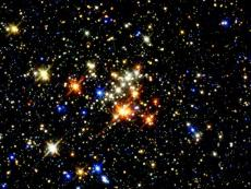 The-Stars-***