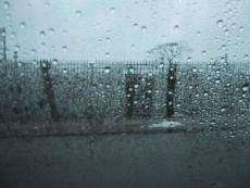 Moments of Rain