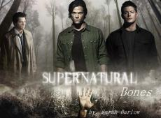 Bones:Supernatural fanfiction: Chapters one and two