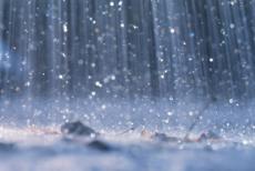 The lovely rain!