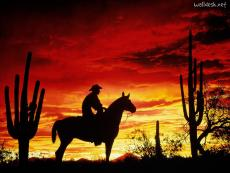 Outlaw (Poem)
