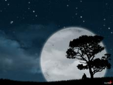 - Silent Night -