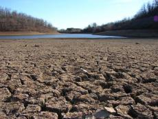 Seasonal Drought (Poetry Antonym Idea)
