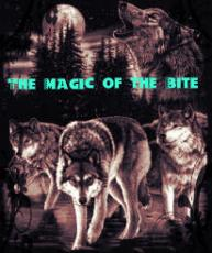 The Magic of the Bite: A Werewolf series