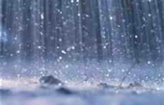 The Rain's Song
