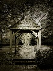 The Secret Story of the Well.