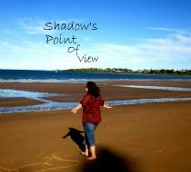 A Shadow's Point of View
