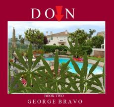Down: The Story of a Teenage Dealer: Book Two