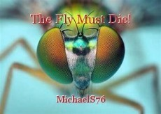 The Fly Must Die!