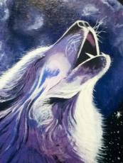 Creatures of night