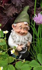 The Gnome That Never Was