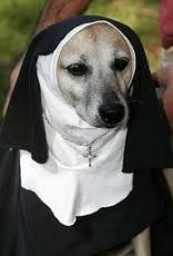 Crouching Tiger Barking Nun