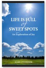 Life is Full of Sweet Spots: An Exploration of Joy