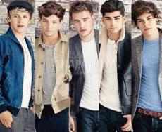 One Direction Love Infection