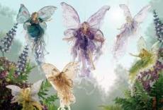 The Fairies Did It!