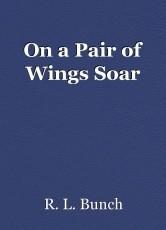 On a Pair of Wings Soar