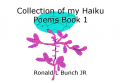 Collection of my Haiku Poems Book 1