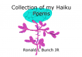 Collection of my Haiku Poems