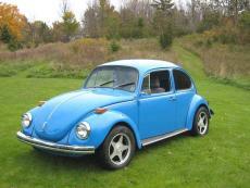 Papa's Bug