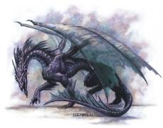 The Last Shadow Dragon