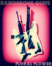 Dangerous Guns