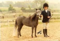 -MINIATURE HORSES RULE- A Beginner's Guide