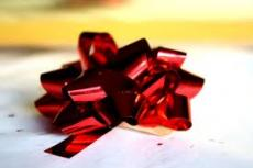 Shinny red bow