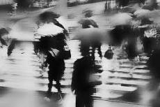 A photograpic memory