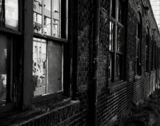 Emancipation - the vermin child