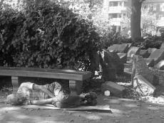 HOLOCAUST PARK.