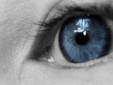 Blinded Vision
