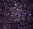 *The Stars *