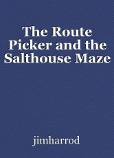 The Route Picker and the Salthouse Maze