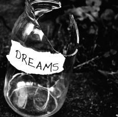 Pieces of Dreams