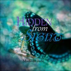 Hidden from Sight