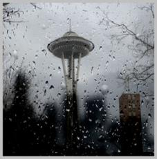 Seattle Nights PART 1