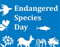 Endangered species of the world-1
