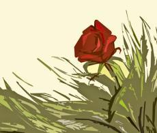 He Rose, My Rose