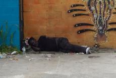 Streets:  Joe Lopez