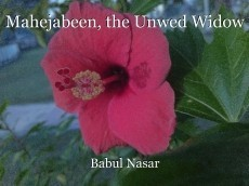 Mahejabeen, the Unwed Widow