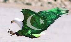 Patriotism To Muslim-e-Ummah Especially Pakistan!