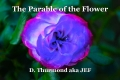 The Parable of the Flower