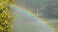 Rainbows And Rebels