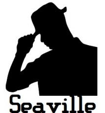 The Detective of Seaville
